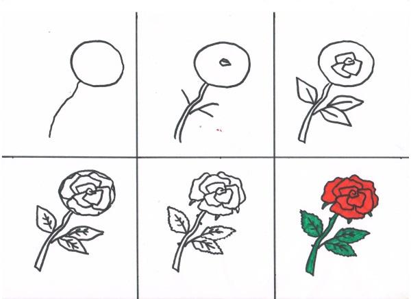 Нарисовать розу поэтапно фломастером